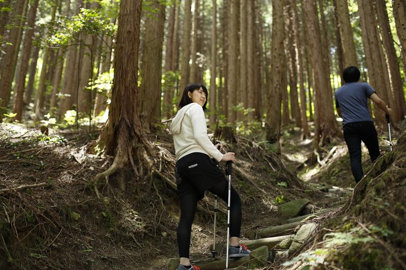 阿讃の自然を巡る散策に出かけてみませんか?